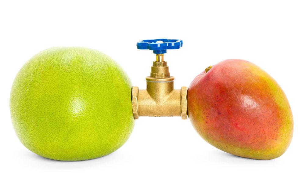 集图网 图片素材 餐饮美食 水果蔬菜 水果,柚子,石榴,连接,水龙头图片