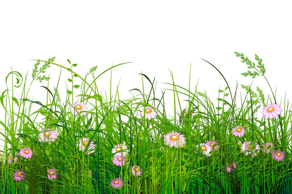 春天的美景图片大全-油画棒画图片大全风景-春天的简笔画图片大全图片