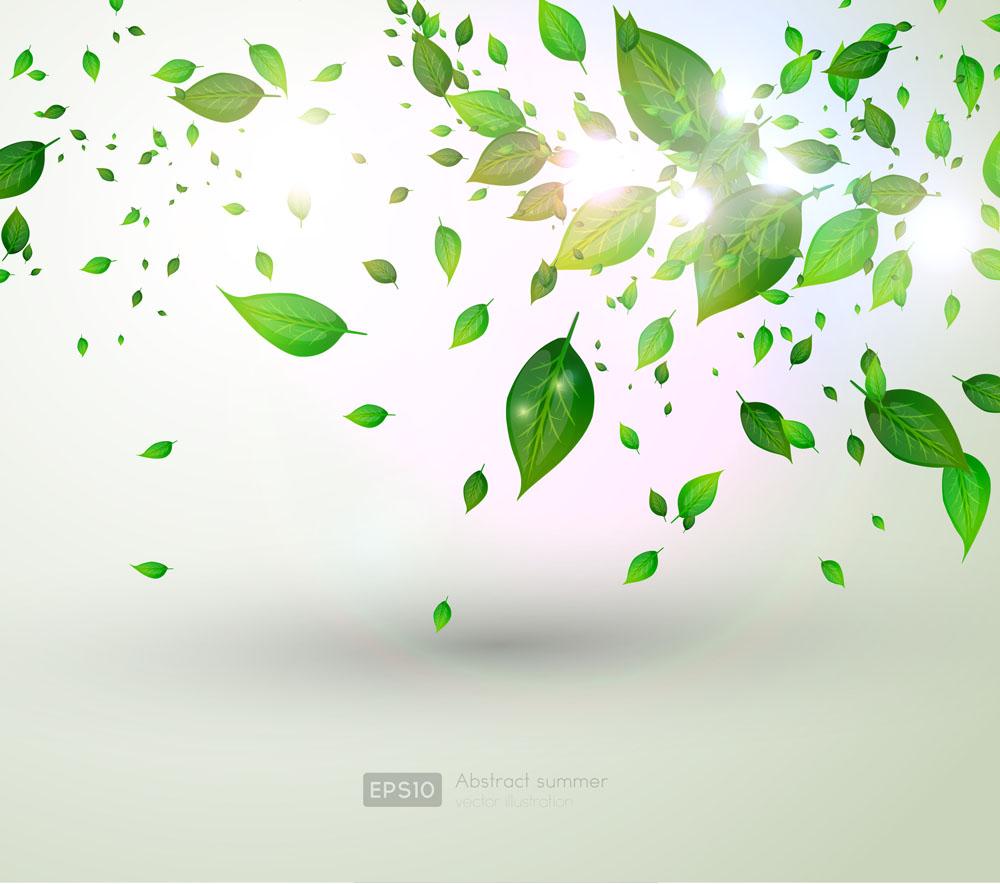 集图网 矢量素材 广告设计 其他模板 飘落的树叶,绿叶,树叶背景,叶子图片