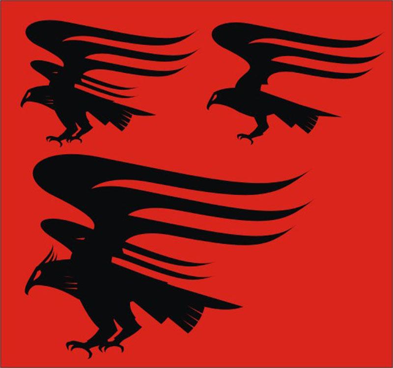动物图标,标志图标,,动物t恤印花图案,服装印花图案,老鹰,英雄,印花