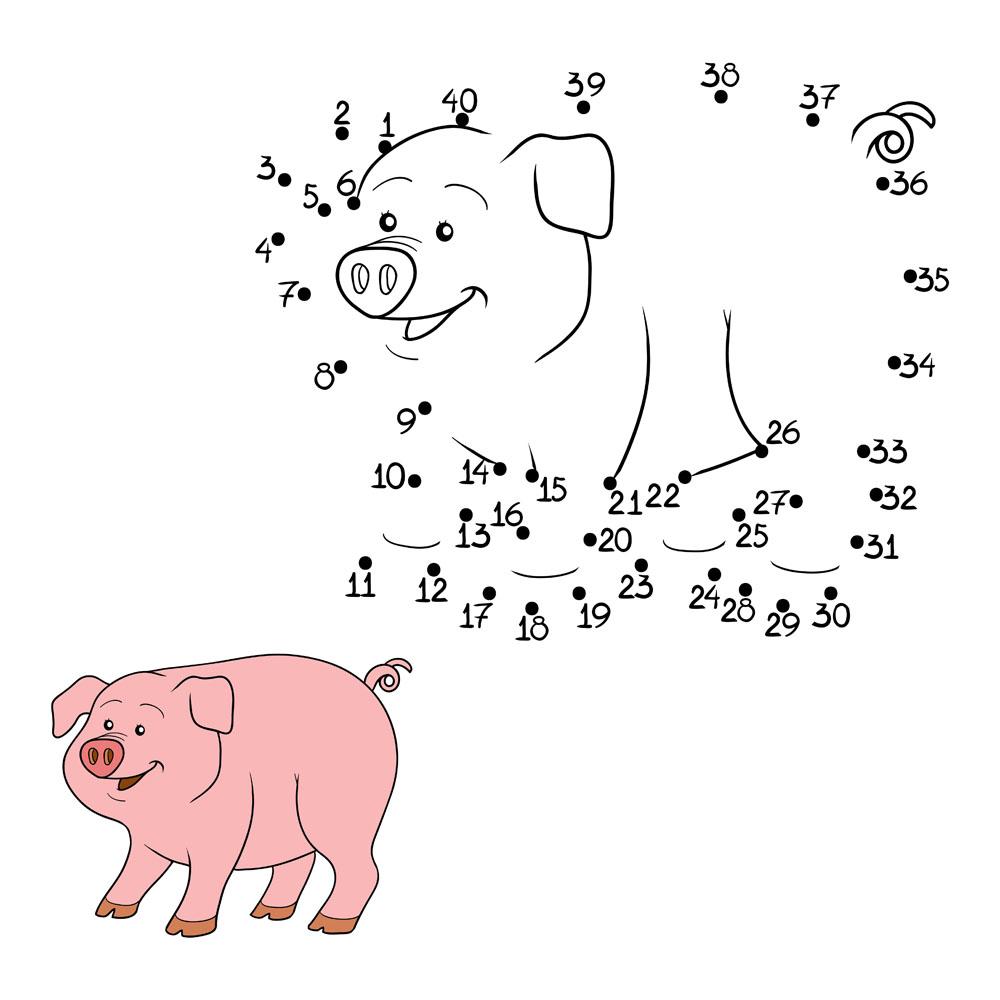 卡通猪插画图片