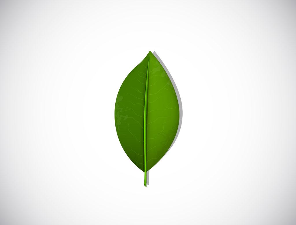 卡通绿色植物图片大全-绿色植物叶子图片大全图片