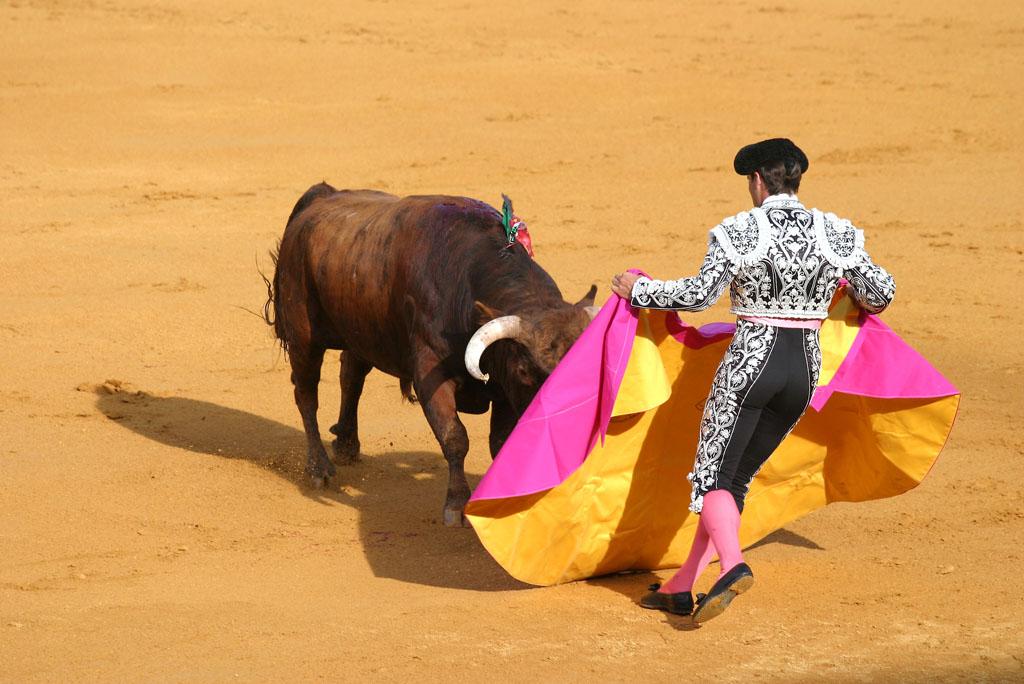 西班牙斗牛士摄影图片
